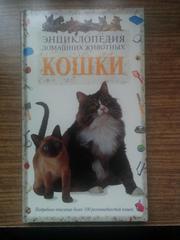 Энциклопедия домашних животных: Кошки